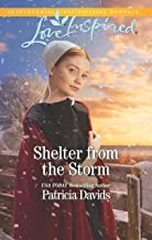 Shelter from the Storm: A Fresh-Start Family Romance (North Country Amish)