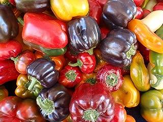 Best cubanelle sweet pepper plants Reviews