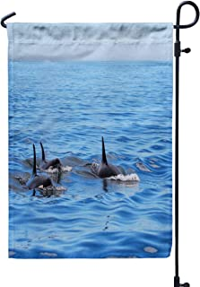 GROOTEY Welcome Outdoor Garden Flag Home Yard Decorative 12X18 Inches Pod Killer Whales Swimming Victoria Canada Blue Sky Ocean Double Sided Seasonal Garden Flags,Gray Yellow