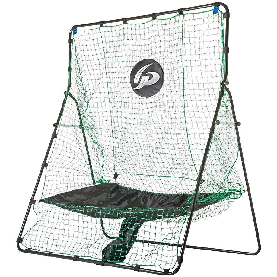 獣少ない太いGP (ジーピー) 野球 バッティングネット 集球モデル 軟式野球?ソフトボール用(縦200cm 横160cm) 36898