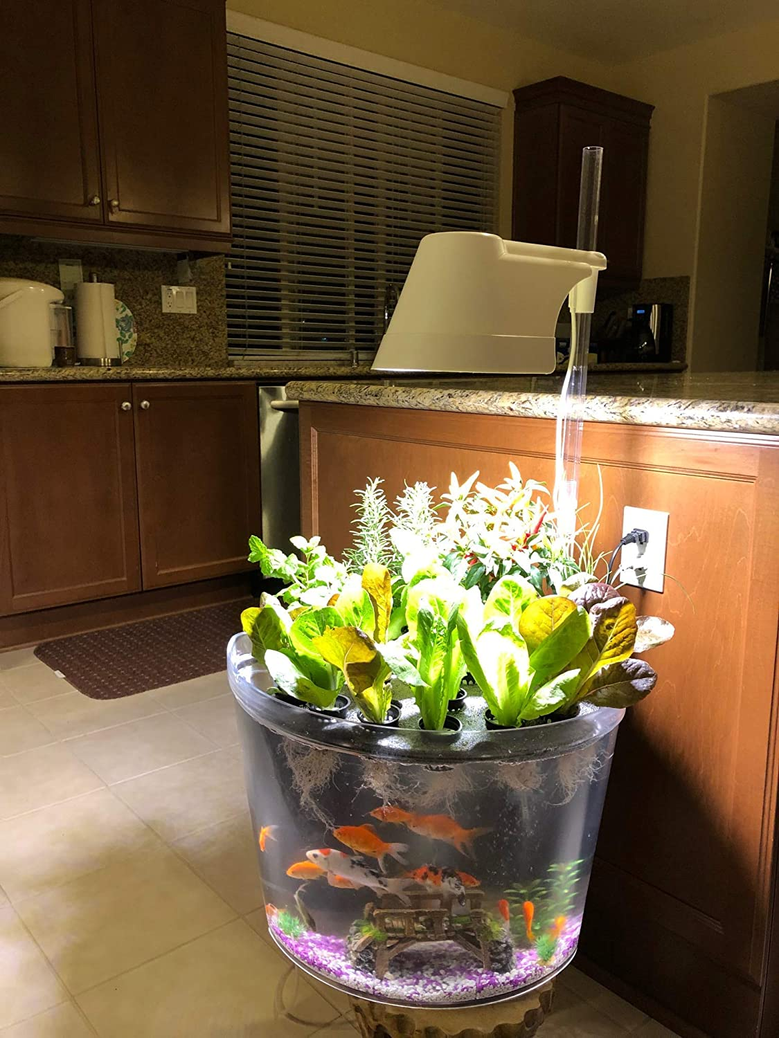 Kingro 20 in 20 Indoor Gardening Ecosystem Hydroponic/Aquaponic with Lighting  and Fish Tank