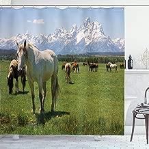 Ambesonne National Parks Shower Curtain, Design Snowy Idyllic Mountain Peaks Horse Art Prints, Cloth Fabric Bathroom Decor Set with Hooks, 70