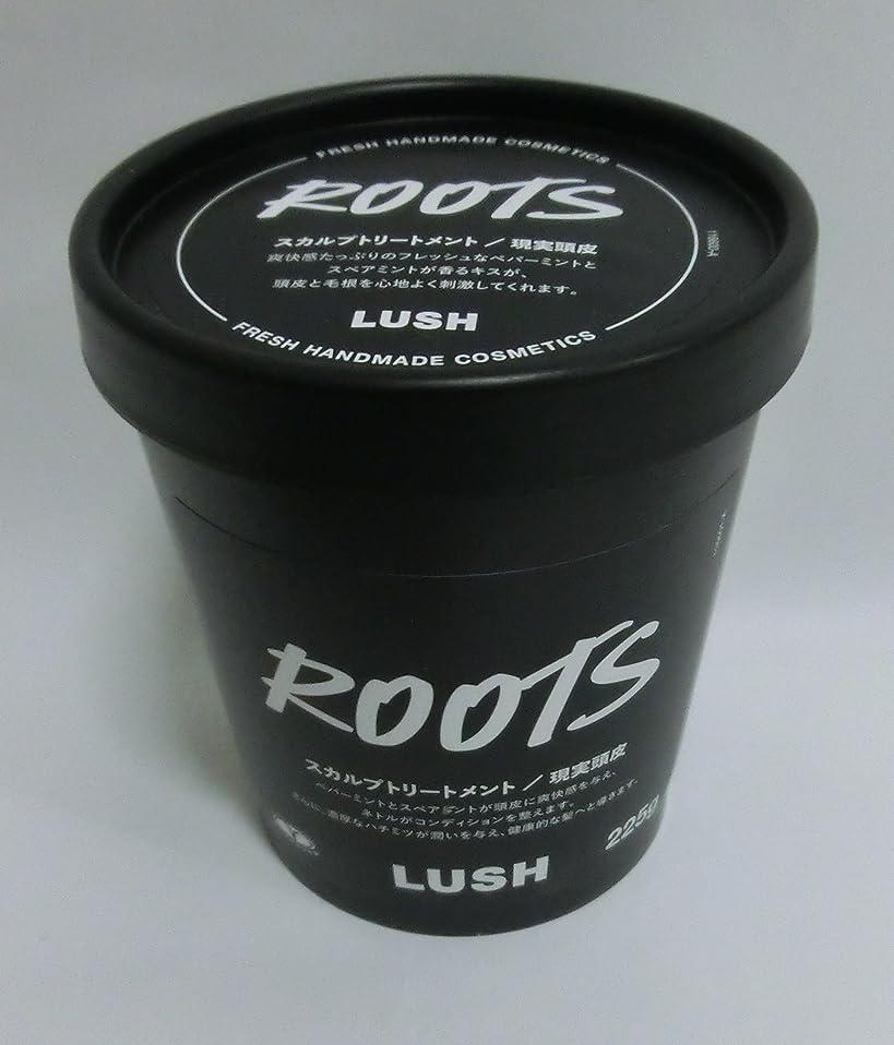 領域リーズつまずくLUSH ラッシュ 現実頭皮(225g)