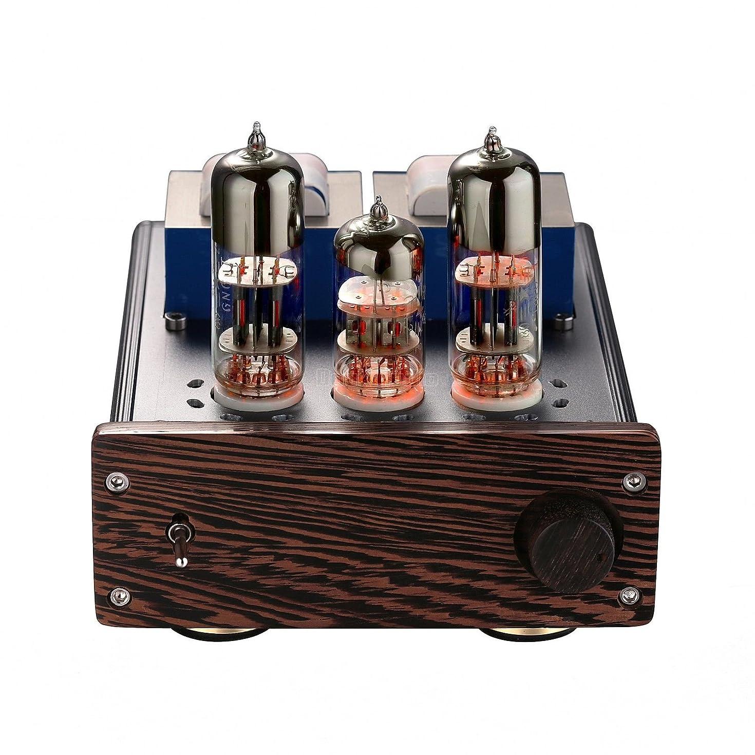 Nobsound Mini 20-Watt 6N6+6N2 Vacuum Tube Amplifier SEPP Class AB Desktop Stereo Power Amp for HiFi Home Audio Sound System (DJ418)