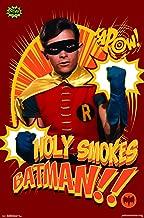 Trends International DC Comics Batman TV Series-Robin Wall Poster, 22.375