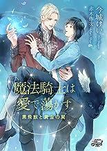 表紙: 魔法騎士は愛で蕩かす~黒飛獣と黄金の翼~ (シャレードパール文庫) | 赤木 作次