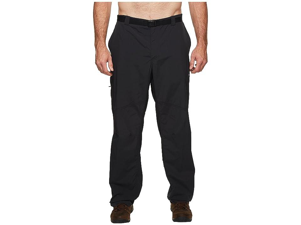 Columbia Big Tall Silver Ridgetm Cargo Pant (Black) Men