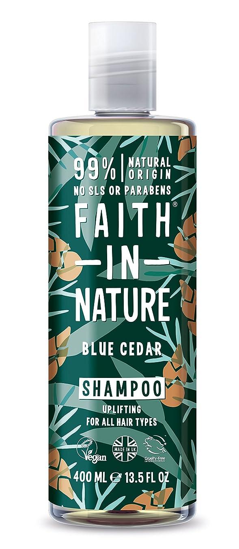 噴水ピック順応性男性青杉のシャンプー400ミリリットルのための自然の中で信仰 - Faith in Nature for Men Blue Cedar Shampoo 400ml (Faith in Nature) [並行輸入品]