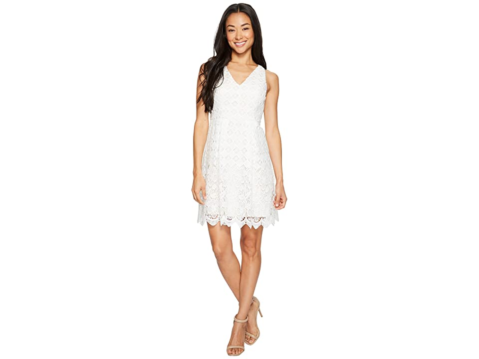 Adrianna Papell Petite Lace Fit and Flare (White/Powder) Women