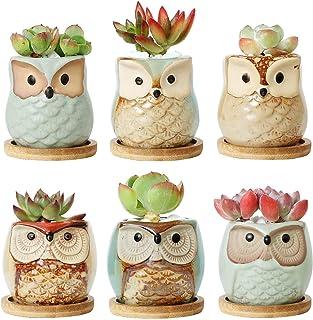 T4U Ceramic Succulent Pots with Bamboo Saucers Mini Size Set of 6, Cute Owl Bonsai Pots Home and Office Decoration Desktop...