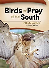 Birds of Prey of the South Field Guide (Bird Identification Guides)