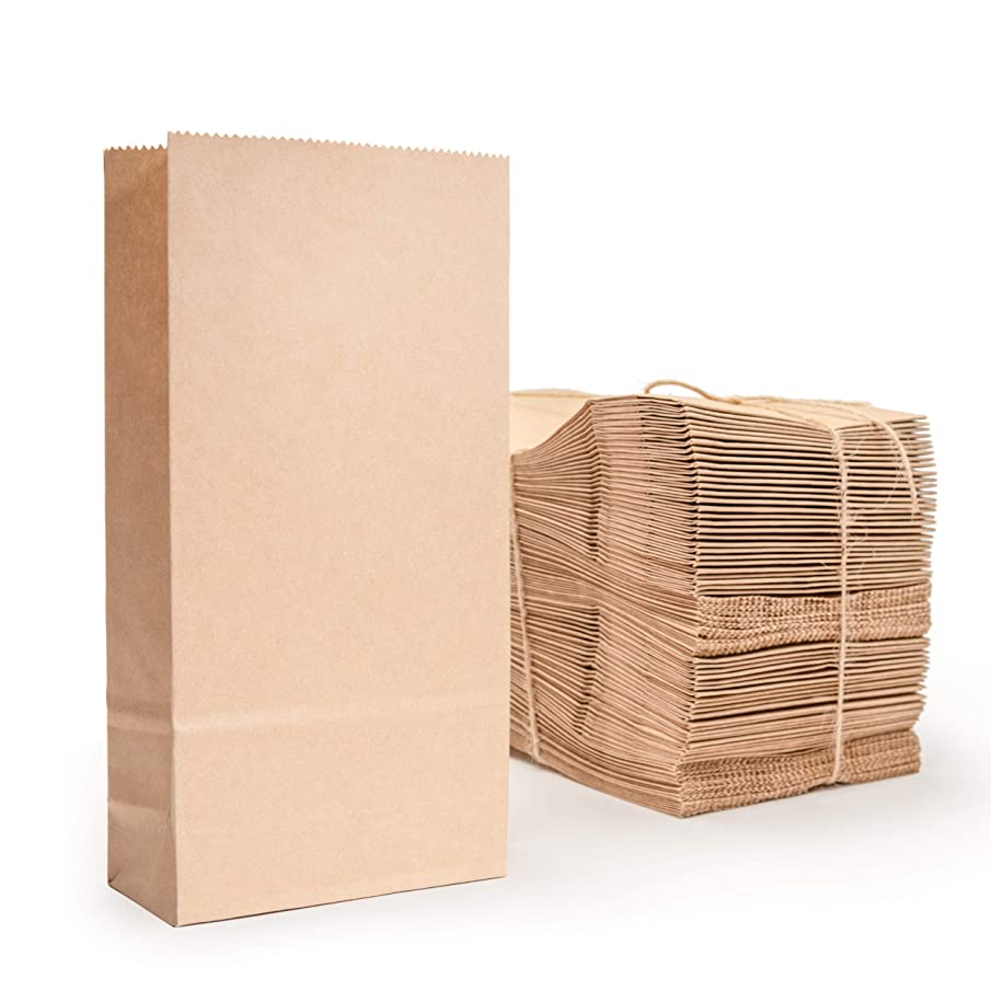 TLDEM Paper Bag Pro, 100 Pack Brown Paper Snack Bags - Small 3.9 x 1.9 x 8 Inch Bag - Premium Heavy Duty 80 GSM Kraft Paper