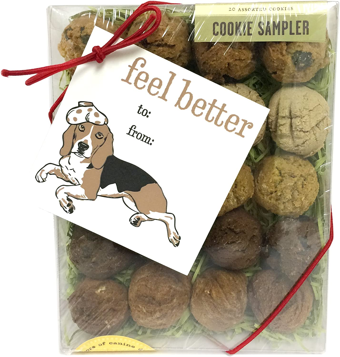 Feel Better Box with Gift Tag Dog Biscuits
