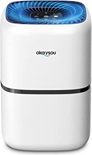 Okaysou AirMic4S Air Purifier with H13 True HEPA filter for Home, Remove Pet Hair, Smoke, Pollen, Dust, Pet Dander, for La...