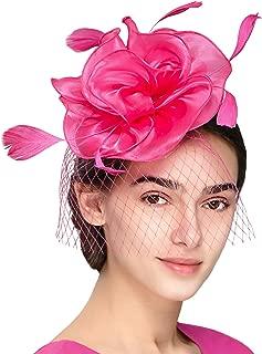 Fascinators Headband Tea Party Hats for Women Royal Wedding Hat Feather Mesh Hair Clip
