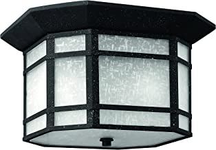 Hinkley 1273VK Craftsman/Mission Two Light Flush Mount from Cherry Creek collection in Blackfinish,