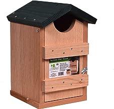 Best songbird essentials screech owl house Reviews