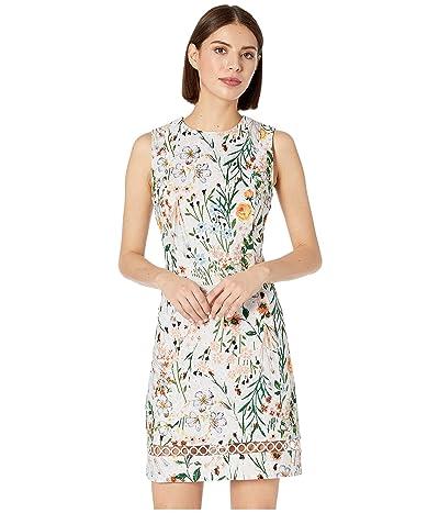 Calvin Klein Floral Print Cotton Sheath Dress with Trim Detail (Peach Multi) Women