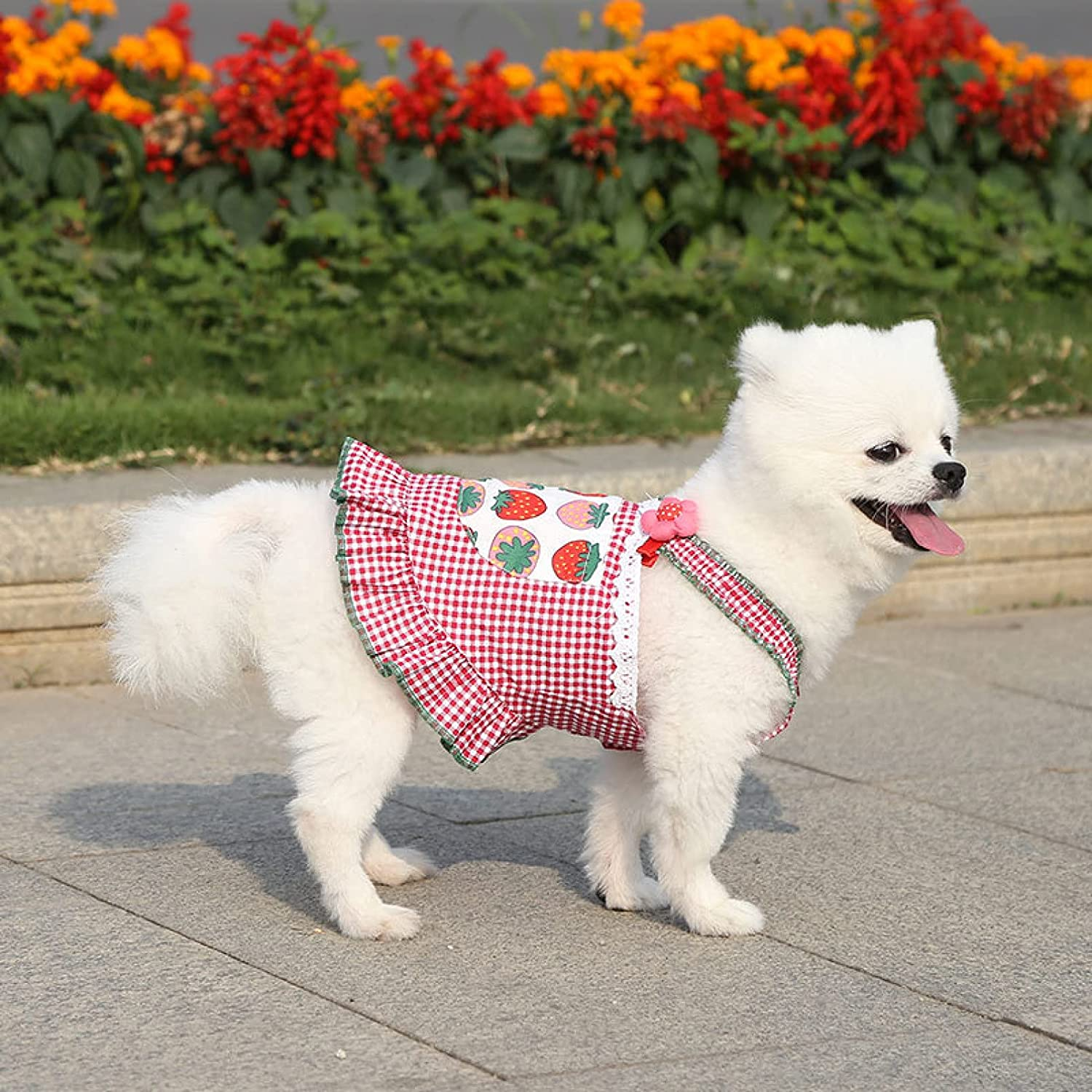 Clothes for Cheap Ranking TOP20 Pets Dog Dresses Breathable Summer Dress