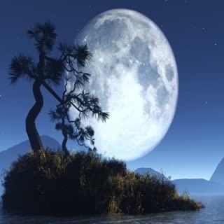 beautiful Moon light live Wallpaper