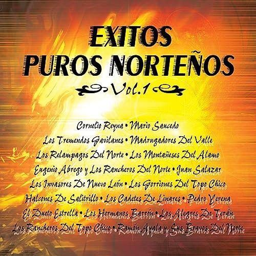Exito Puros Norteños Vol.1