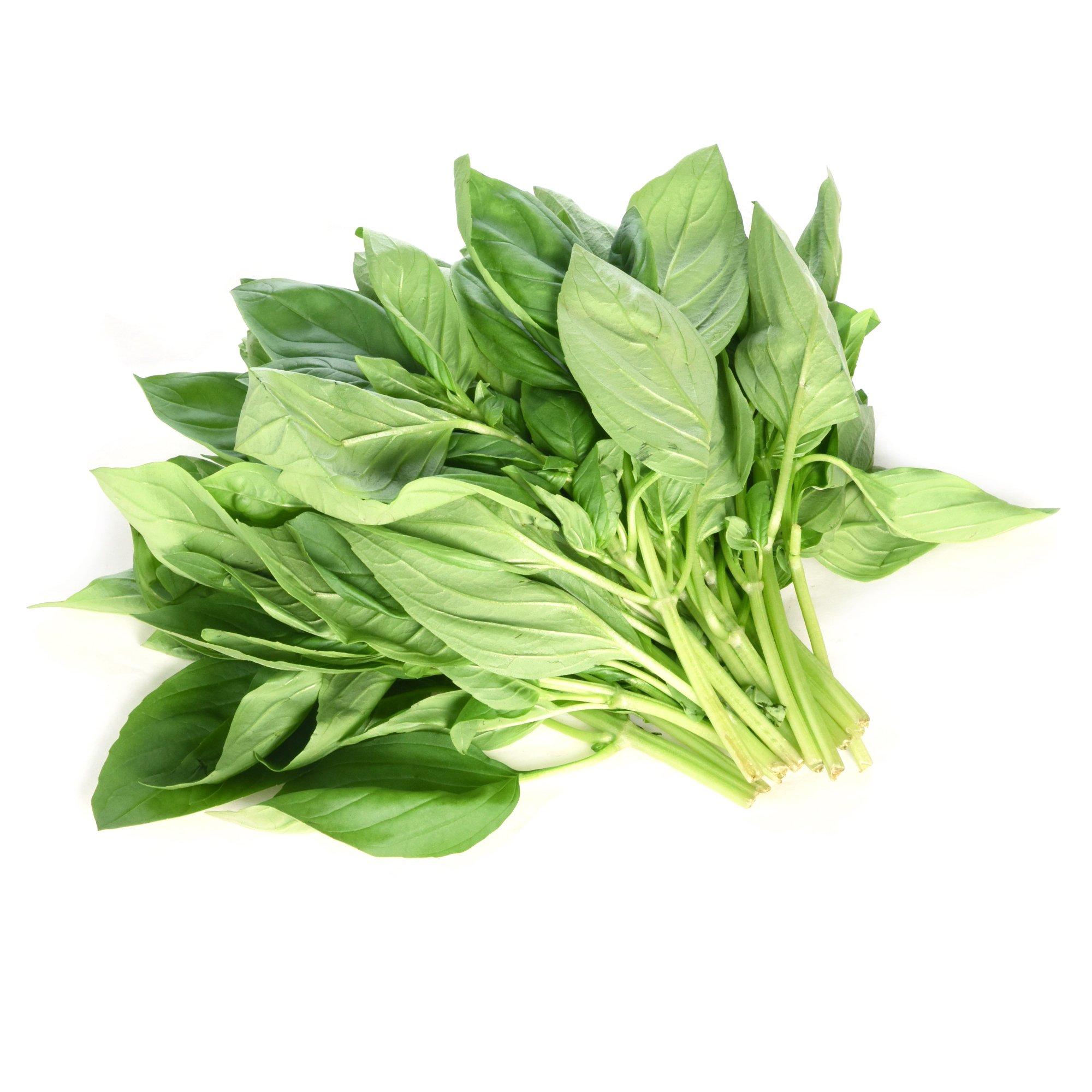 Langmead Herbs Basil 100g