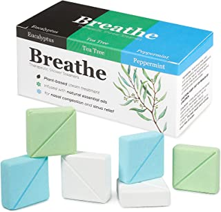 InYourNature BREATHE Shower Steamers Eucalyptus, Peppermint & Menthol and Tea Tree, 6 x Shower Tablets Aromatherapy with O...