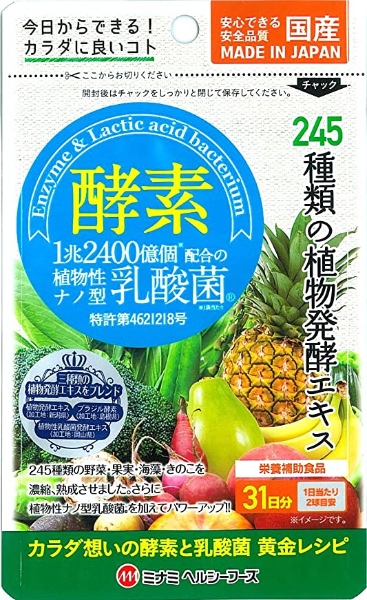ピザ疫病無法者酵素 植物性ナノ型乳酸菌 62球入【約31日分】