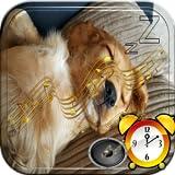 Tonos De Alarmas Despertador