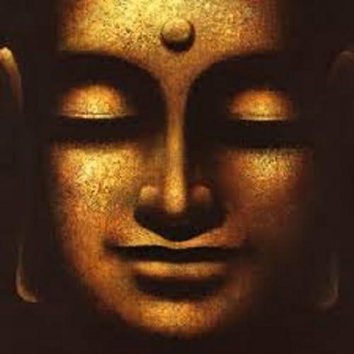 filosofia budista libros