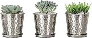 Monarch Abode 20310 Nickel Finish (Set of 3) Indoor Flower Succulent Pots Planter with Drainage Hole