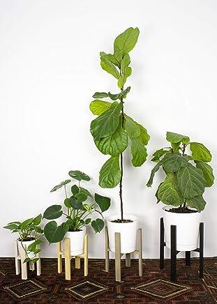 Mid Century Modern Plant Stand