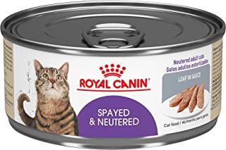 Royal Canin Feline Health Nutrition Spayed/Neutered Loaf in Sauce Canned Cat Food
