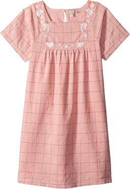 Precious Butterfly Dress (Toddler/Little Kids/Big Kids)