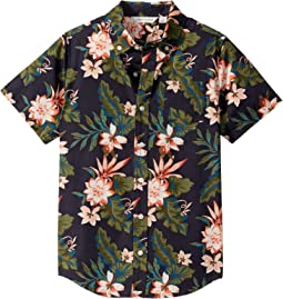 Tropical Floral
