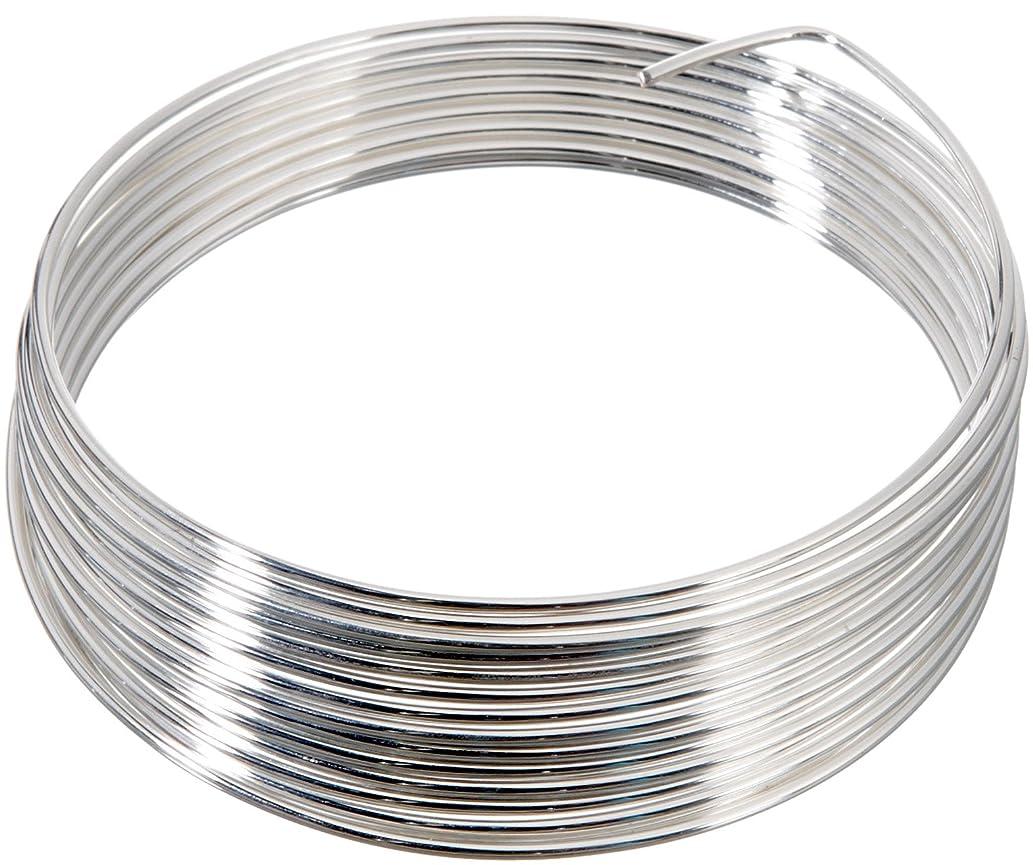 Knorr Prandell 6461123 1-Piece Wire, Silver