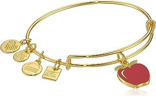 Alex and Ani Charity by Design, Apple EWB, Bangle Bracelet