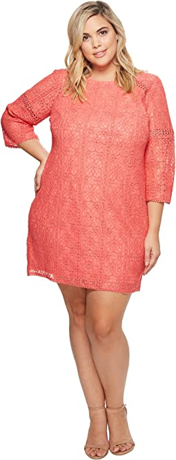 Adrianna Papell - Plus Size Marni Lace 3/4 Sleeve Shift Dress