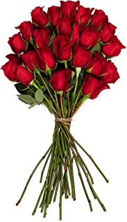 Benchmark Bouquets 2 Dozen Red Roses, No Vase (Fresh Cut Flowers)