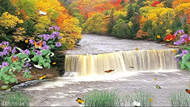 Autumn Waterfall [Download]