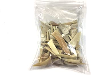 UKGE Kiddos Genuine Bag of Fossilized Shark Teeth ✔️