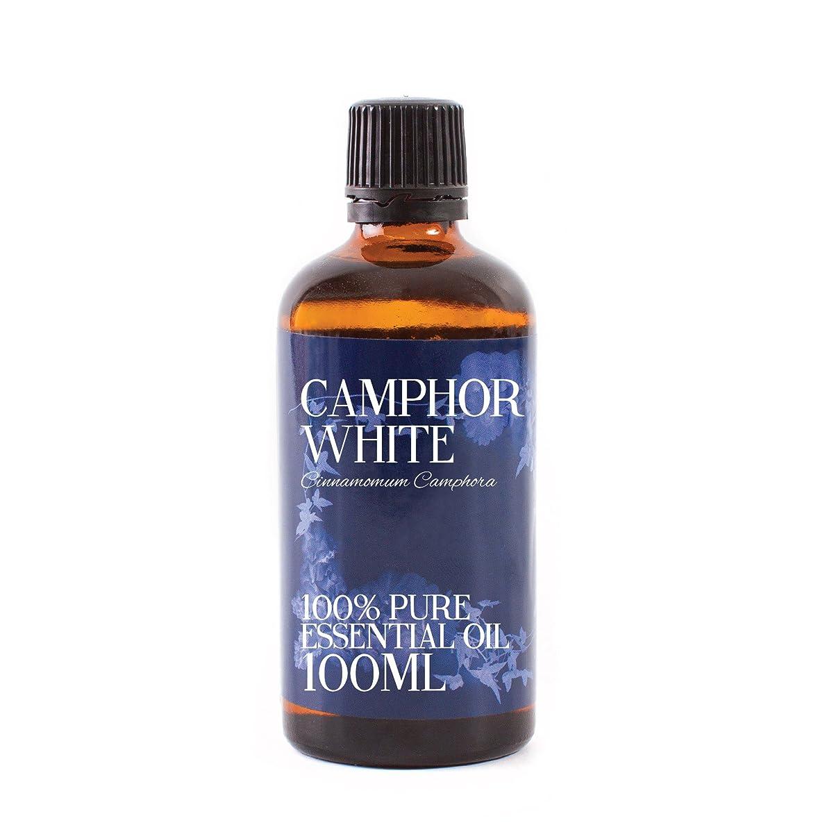 炭素顕著メッセージMystic Moments | Camphor Essential Oil - 100ml - 100% Pure