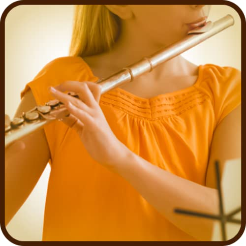 Real Flute : Musical Instrument
