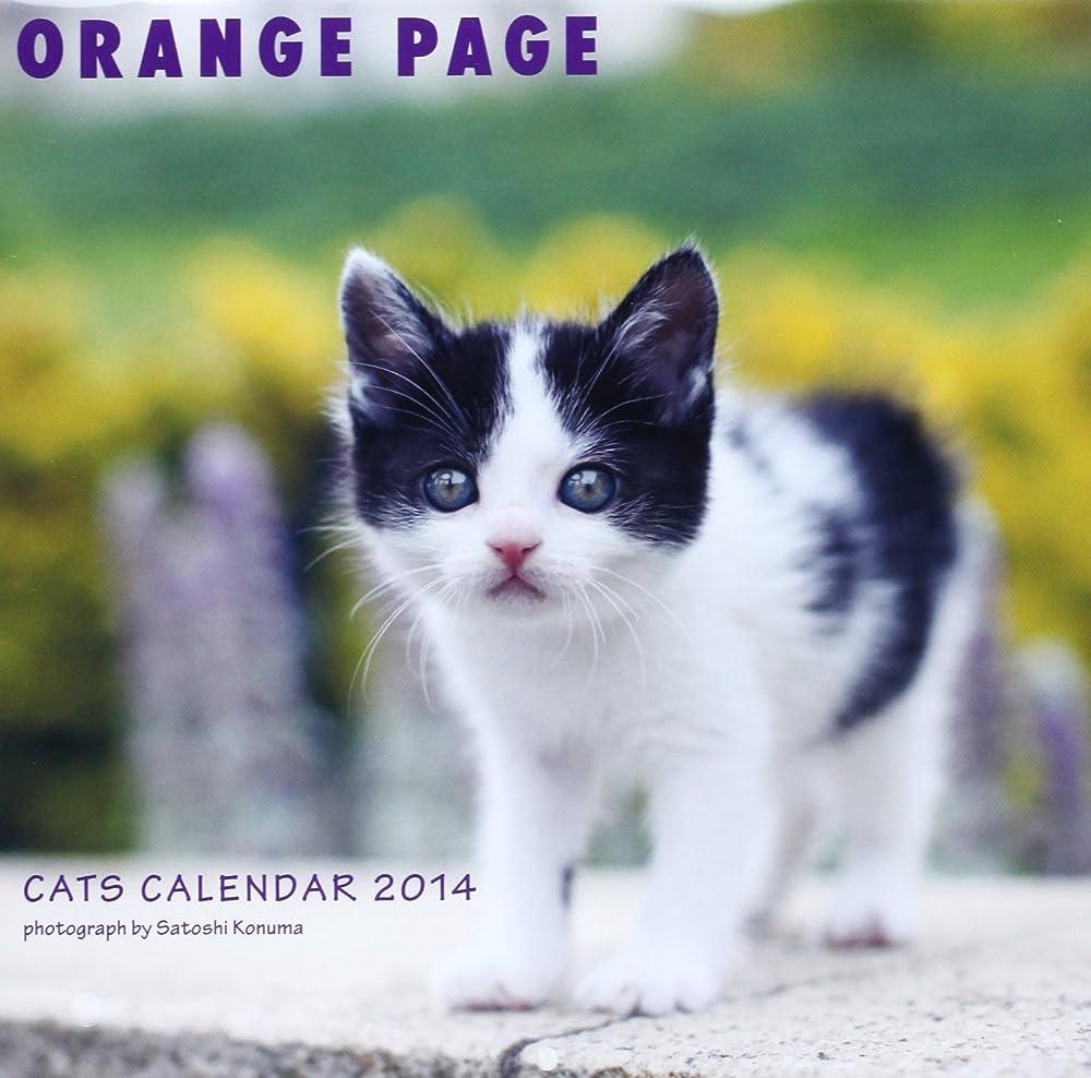 リズミカルなサポートしなやかCATS CALENDAR 2014 ([カレンダー])