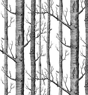 Modern Minimalist Birch Tree Pattern Waterproof Wallpaper Wall Paper Roll for Livingroom Bedroom, 20.8 In32.8 Ft=57 Sq.ft,Black&Cream-White