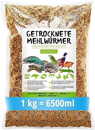 Vers de farine séchés • 1 kg (équivalent à 6,5 litres). Nourriture de qualité supérieure - Un snack sain et naturel p...
