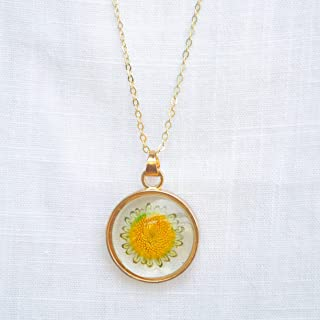 Sunflower Helianthus Chrysanthemum Real Flowers Floating Locket 18k Gold Plated Chain Long Necklace