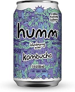 Humm Probiotic Kombucha Blueberry Mint - 2 Billion Probiotics for Gut Health - Organic, Vegan & GMO-Free (24 Pack)