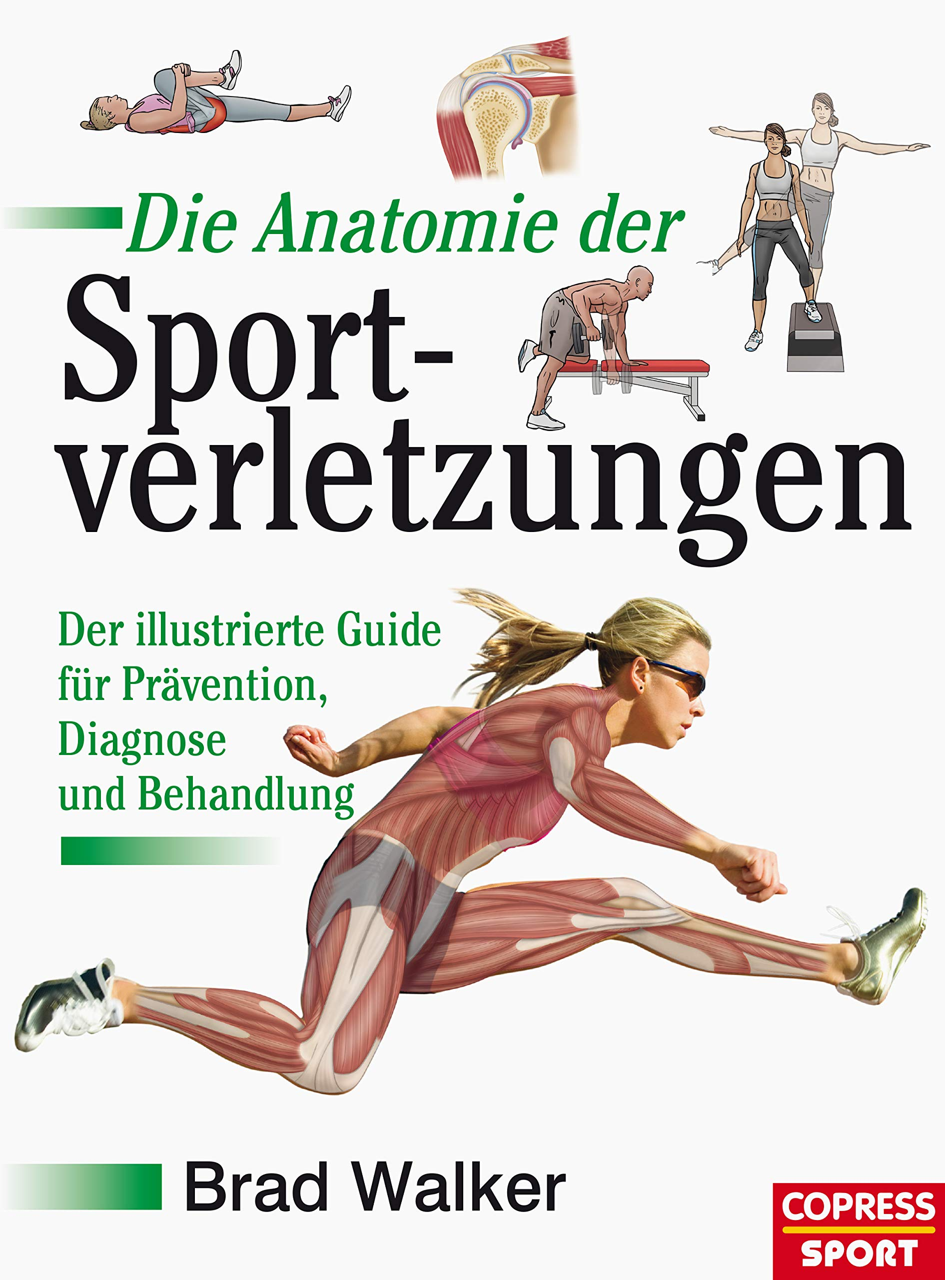 Download Die Anatomie Der Sportverletzungen: Der Illustrierte Guide Für Prävention, Diagnose Und Behandlung (German Edition) 