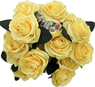 Best 65 red roses Reviews